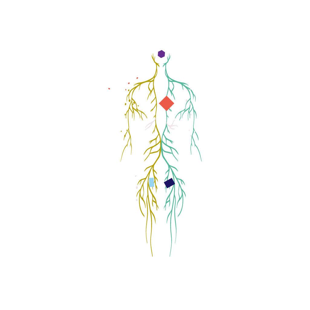 diego-cinquegrana-aimaproject-sa-agenzia-di-comunicazione-lugano-tree-alchemy-massaggi-medicali-valerie-sorel